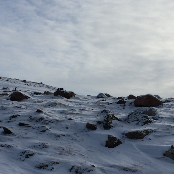 Rocks and snow, Iqaluit, Nunavut (Photo by Dr. J. Paige MacDougall, Canadian Deafness and Training Institute)